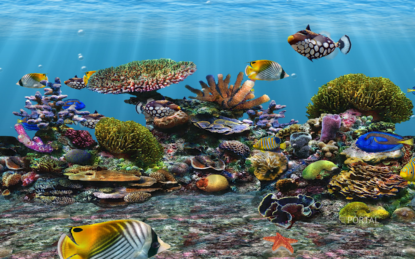 3d fish school screen saver v4 0upedated for Moving fish screensaver