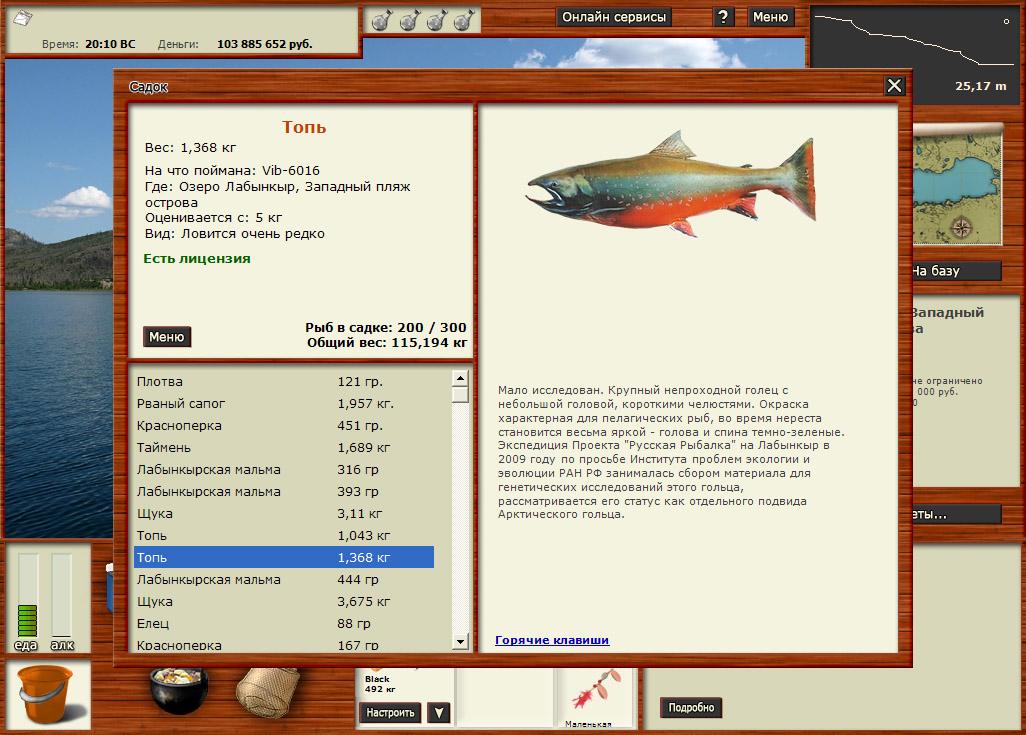 Игра русская рыбалка скачать бесплатно.