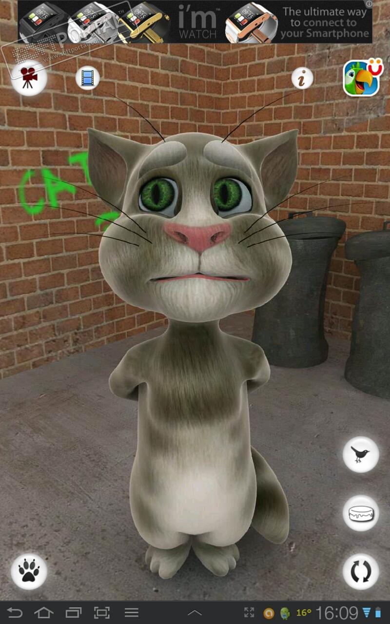 Приложение говорящий кот скачать на андроид