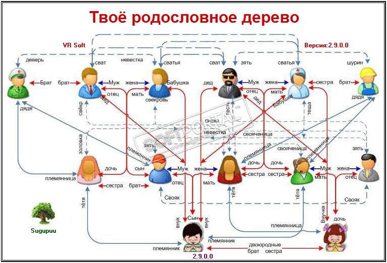 Твоё родословное дерево
