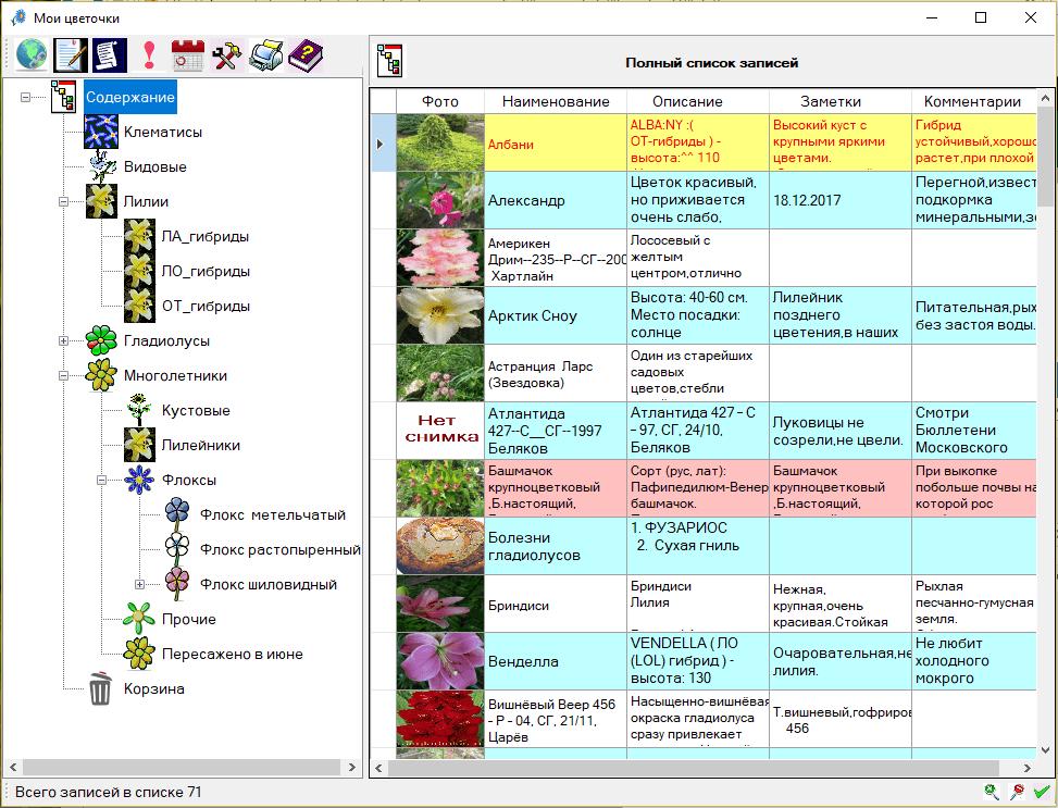Cvetovod