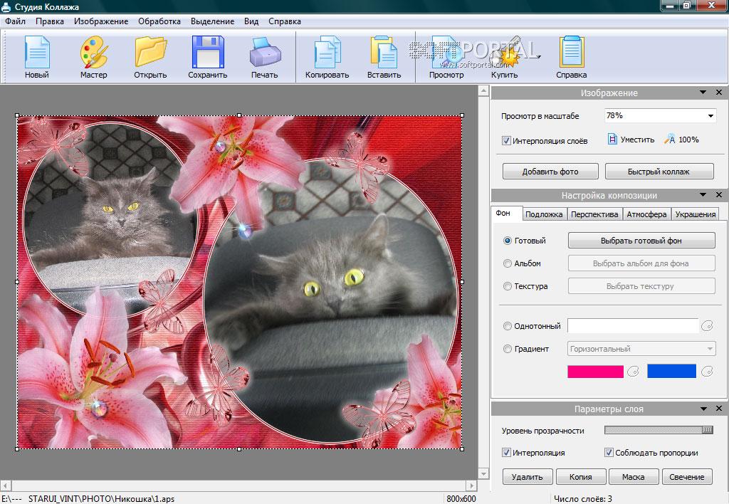 программы для изготовления фотоколлажей свою тещу днем